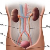 Φυσική θεραπεία κυστίτιδας & ουρολοιμώξεων