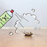 Διατομική Γη – Γη Διατόμων – Βιολογικό εντομοκτόνο παρασιτοκτόνο – 150 gr