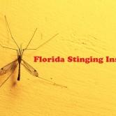 Καλοκαιρινό DIY: Φτιάξτε το Δικό σας Κερί Σιτρονέλας και Αποχαιρετίστε τα Κουνούπια για Πάντα!