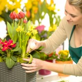 Υγιή φυτά χωρίς χημικά