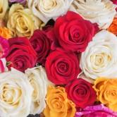 Τριαντάφυλλα: Μάθετε το Κρυμμένο Νόημα του Κάθε Χρώματος!