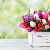Τα 15 πιο ρομαντικά λουλούδια για τις γυναίκες