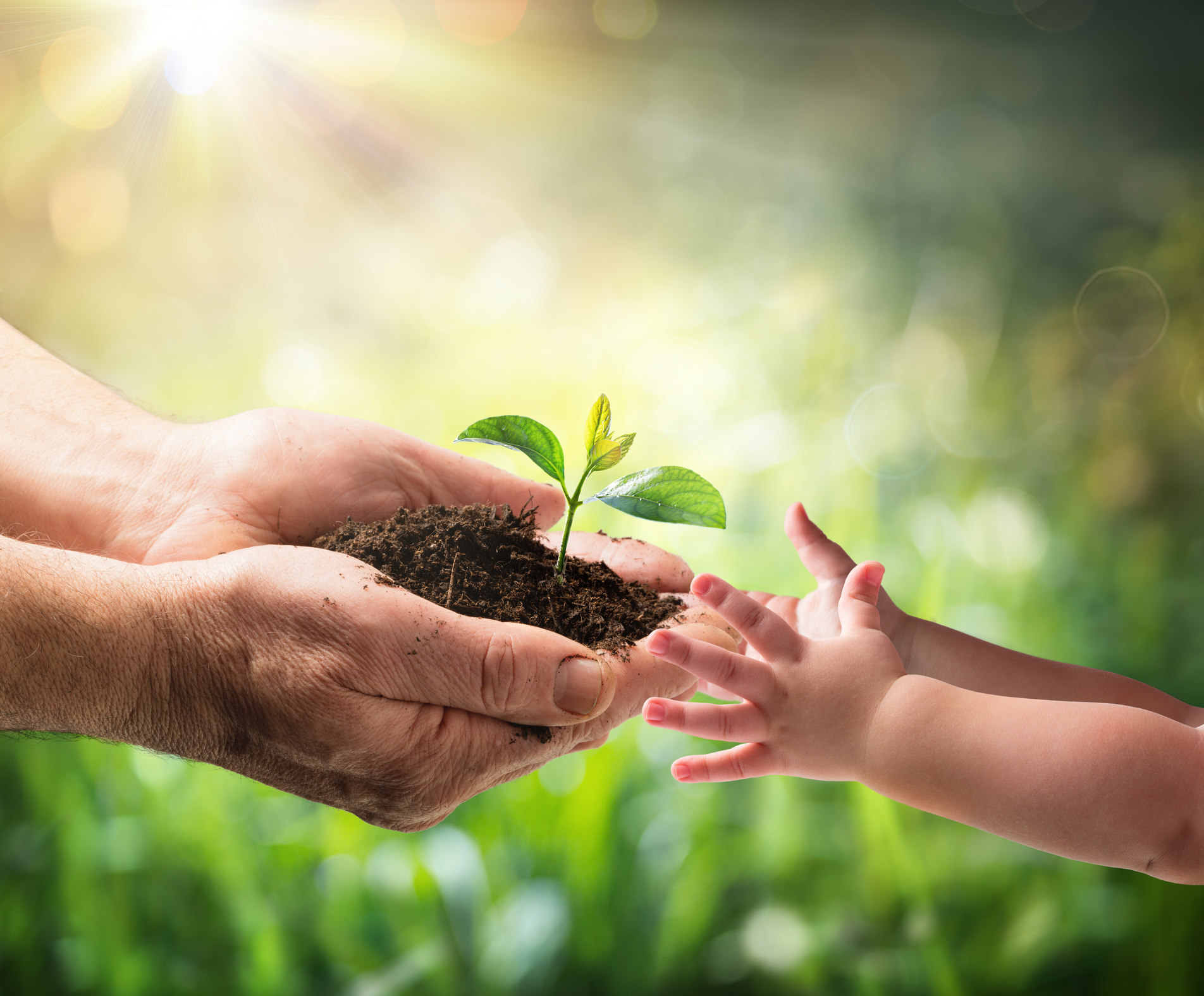 Environmental Protection For New Generation